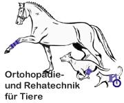 rückenmarksinfarkt hund therapie